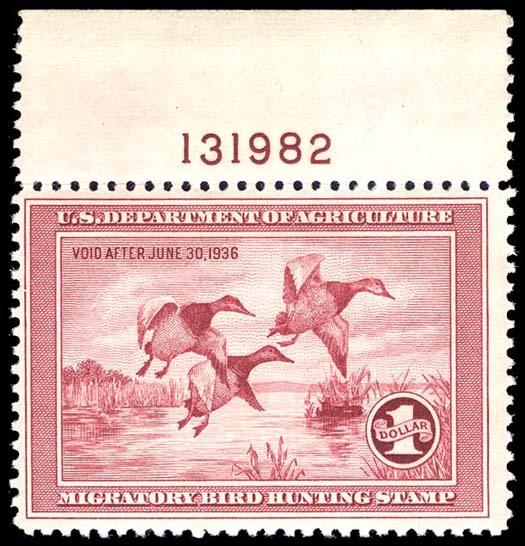 141307 Image
